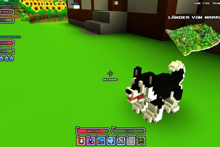Cube World pet food