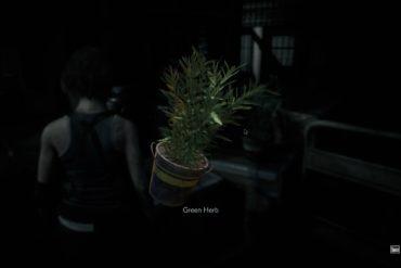 Resident Evil 3 Herbs
