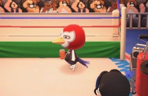 Animal Crossing New Horizons Lucha
