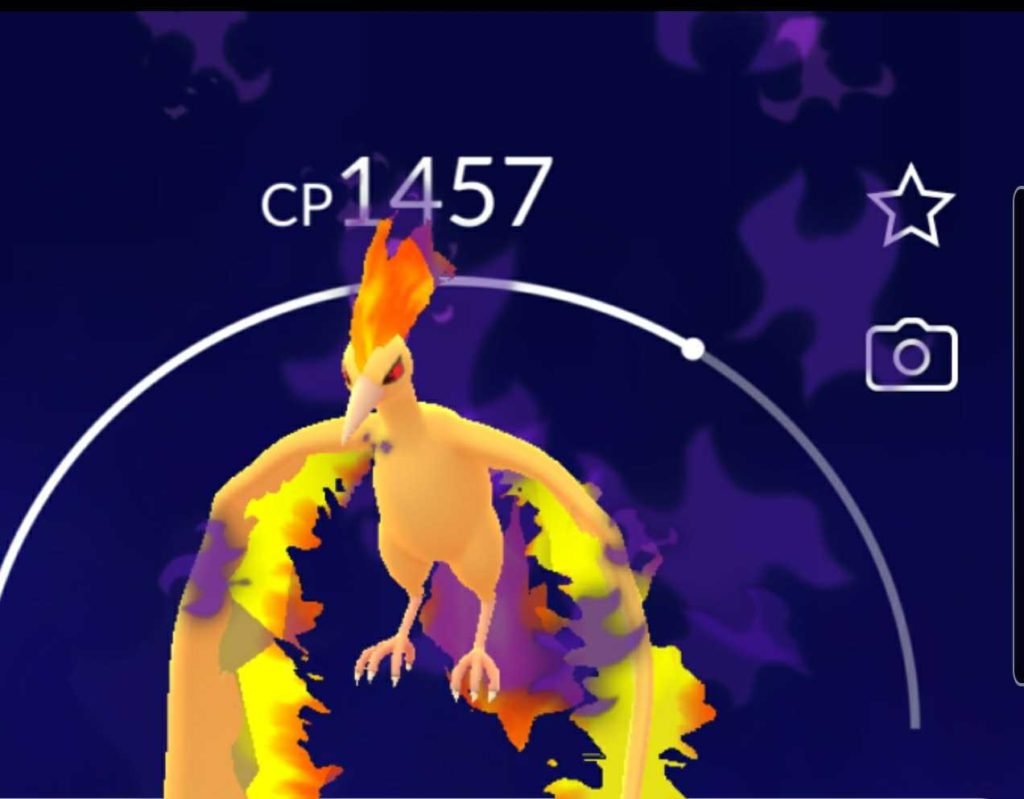 Pokemon GO Fest Day 2 Moltress