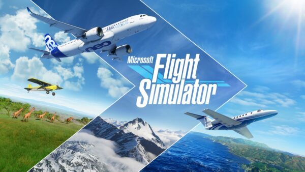 Microsoft Flight Simulator Crash Fix