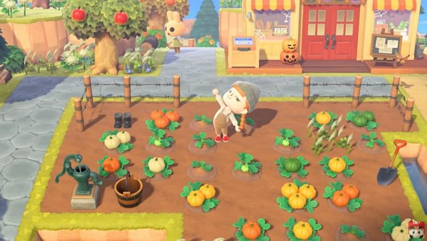 How to Grow Pumpkins in Animal Crossing: New Horizons
