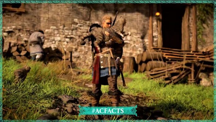Raider Cat in Assassin's Creed Valhalla